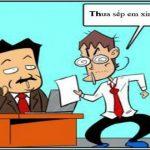 Hỏi đáp đơn phương chấm dứt hợp đồng lao động của người lao động