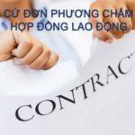 Quy định về việc người lao động đơn phương chấm dứt hợp đồng