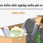 Luật sư tư vấn bảo hiểm thất nghiệp trực tuyến miễn phí